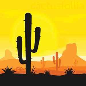 Le temperature minime invernali, associate all'umidità ed al freddo, giocano un ruolo importante nella corretta coltivazione delle piante grasse e succulente durante il riposo vegetativo nella stagione invernale.