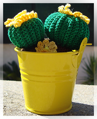 Amigurumi piante grasse all uncinetto cactusfollia for Piante grasse uncinetto