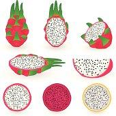 Acquisti online di semi di cactacee e piante succulente. Elenco dei rivenditori italiani e stranieri da cui ho comprato semi.