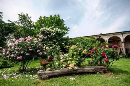 castelloquistini_fioriture