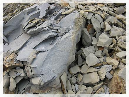 La marna è una roccia terrigena disgregata, che si decompone formando una matrice terrosa, composta principalmente da argilla resa compatta dall'infiltrazione di minerali vari, soprattutto carbonato di calcio, dolomite o, più raramente, silice. Si tratta di una roccia sedimentaria, ossia nata in epoca preistorica dal deposito di fanghi alluvionali sul fondo del mare, a profondità notevoli in cui la sedimentazione non è disturbata dalle onde marine. In questo modo le particelle finissime di argilla si sono depositate in modo omogeneo assieme agli scheletri o ai gusci minerali di organismi microscopici. Col passare delle epoche geologiche tali fanghi sono stati sepolti sotto una coltre di altri materiali, che li ha disidratati e sottoposti a diagenesi (compattamento). In seguito, i movimenti tettonici hanno fatto migrare queste masse rocciose verso l'altro, trascinate dall'emersione delle catene montuose, fino a che l'erosione le ha dissepolte. Non più sottoposta alle pressioni geostatiche, la marna libera le proprie tensioni fratturandosi fino a ridursi a particelle sottili. Infine, la marna è soggetta all'aggressione chimica di agenti atmosferici e organici che tendono, in tempi molto lunghi, a separare nuovamente la porzione del cemento (carbonati, dolomite o silice) dall'argilla..