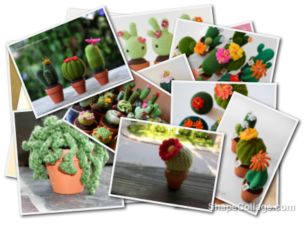 Kit Per Amigurumi : Kit amigurumi per cactus CactusFollia