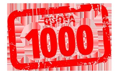 cactusfollia - il gruppo degli amanti delle piante grasse e succulente ha raggiunto quota 1000 iscritti! Sono sempre numerosi gli appassionati, coltivatori e collezionisti di cactacee rare, da innesto, cultivar e ibridi.