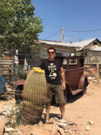 route 66 cactus