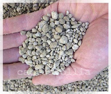 Zeolite: inerte ideale per la coltivazione delle cactacee